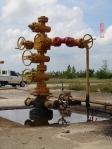 Sumur minyak bumi